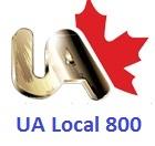 UA Local 800